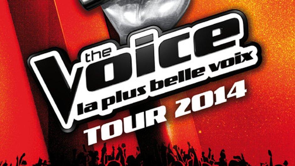 the-voice-tour-2014-coup-d-envoi-30-mai-a-amiens-a-paris-28-29-juin-5255377