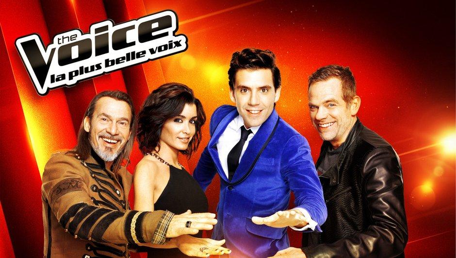 the-voice-3-souhaitez-devenir-5eme-coach-8416189