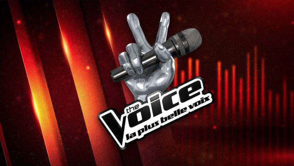 the-voice-3-un-casting-allie-eclectisme-excellence-0345618